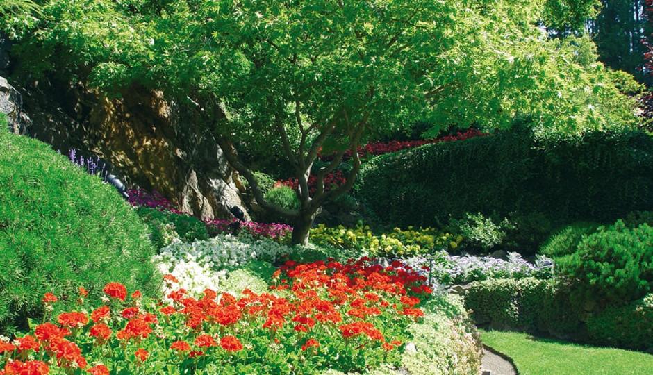 Giardini fioriti in città - Milano