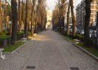 Realizzazione parco e viale Rho